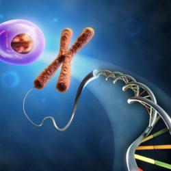 Использование стволовых клеток станет основой регенеративной медицины